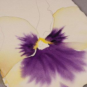 Birgit OConnor Watercolor Flower Painting Petals