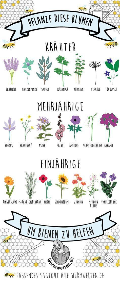 Anleitung für Insektenhotels für Wildbienen #outdoorflowers