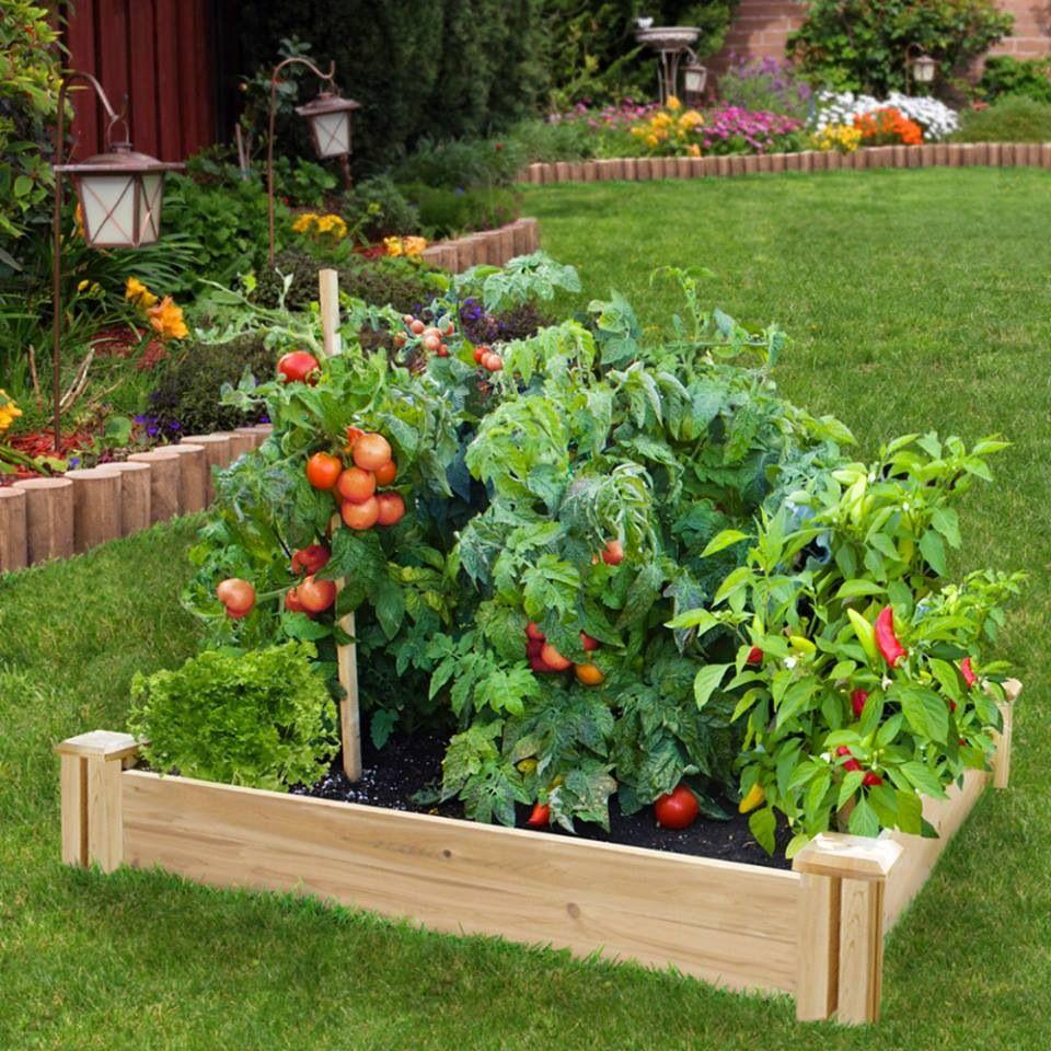 Raised Garden Kits, Vegetable Garden Design