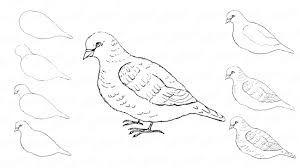 Znalezione Obrazy Dla Zapytania Latwe Rysunki Do Narysowania Olowkiem Kwiaty Drawings Art Moose Art
