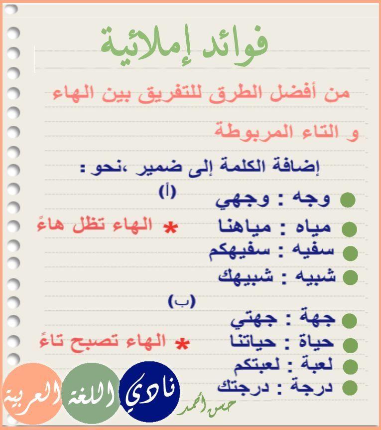 Pin By Abbes Cherni On فوائد إملائية Arabic Kids Arabic Language Learn Arabic Language