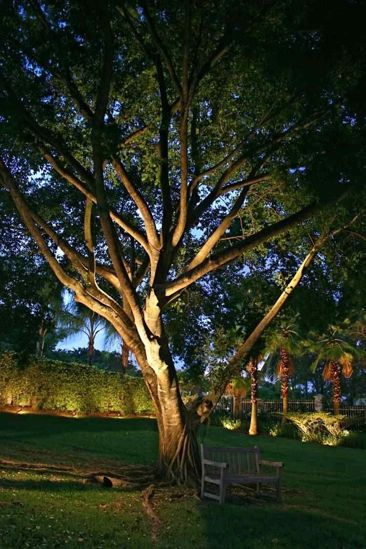 Eclairage De Jardin Moderne Ou Comment Illuminer Votre Jardin Diy Outdoor Outdoor Gardens Outdoor Lighting