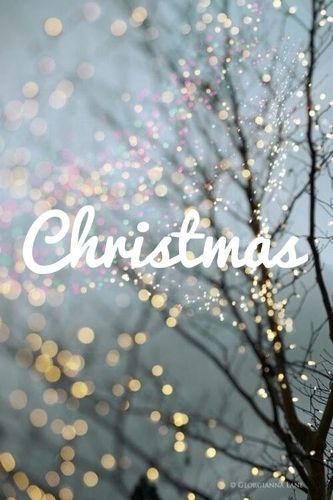 Bible Merry Christmas Images Download For Facebook Whatsapp Pinterest Android Ipad Iphone And Deskt Fairy Lights In Trees Fine Art Landscape Winter Photography
