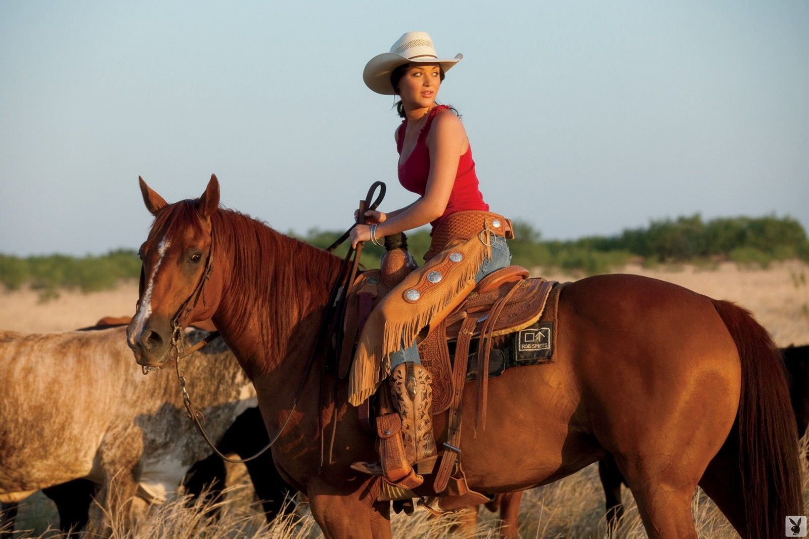 Pin By Larry Gooch On Hop On A Horse Cowgirl And Horse Horses Rodeo Girls