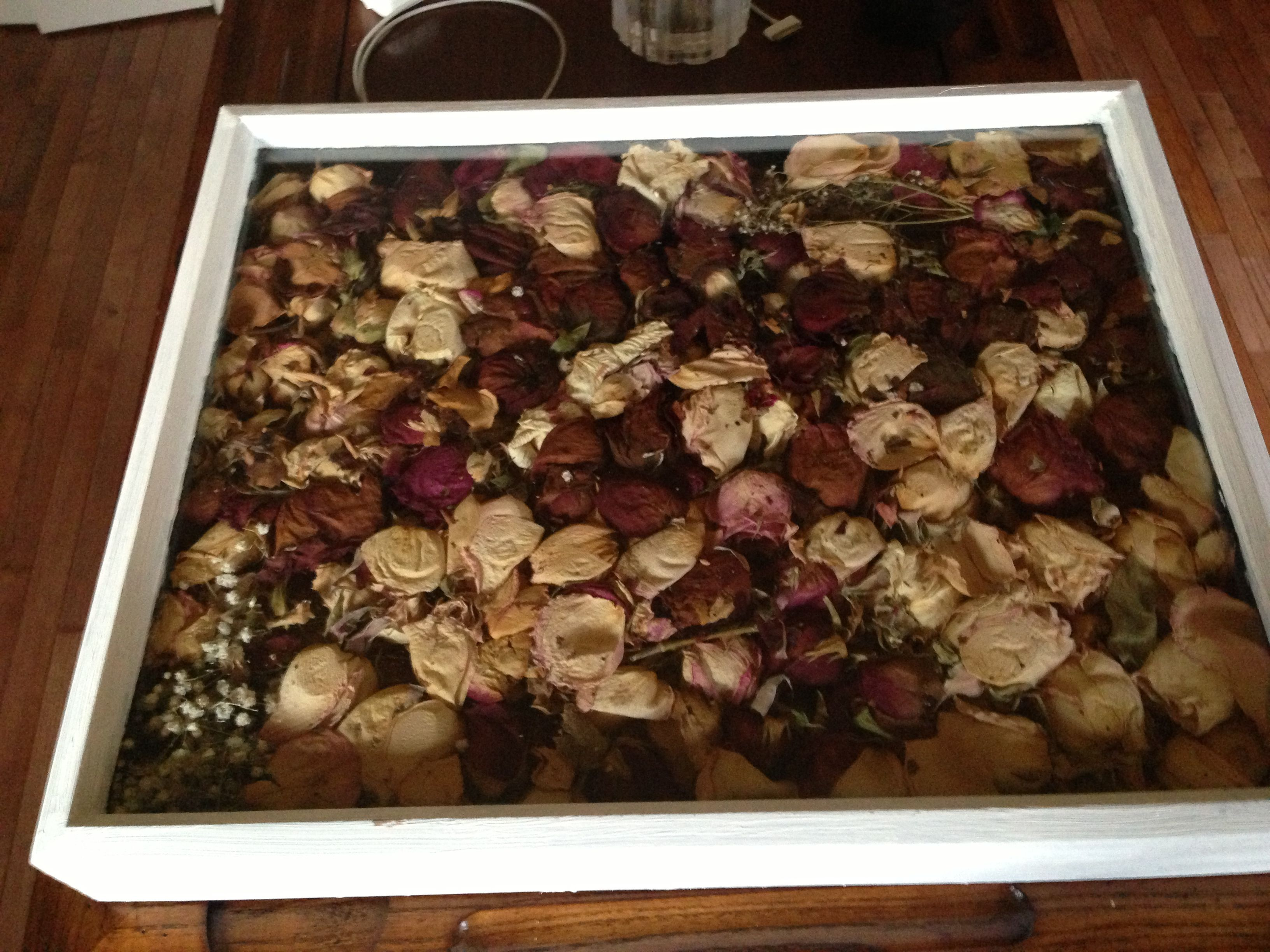Dried rose petal chinese rose flower rose tea buy rose petal - Dried Rose Petals From Over The Years Idea To Do With All Petals Flowers I Have Dried