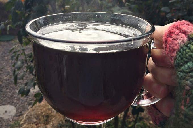 Grow Forage Cook Ferment - Seasonal Recipes, Wildcrafting ...