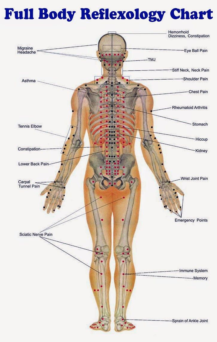 Full body reflexology acupressure and reflexology pinterest