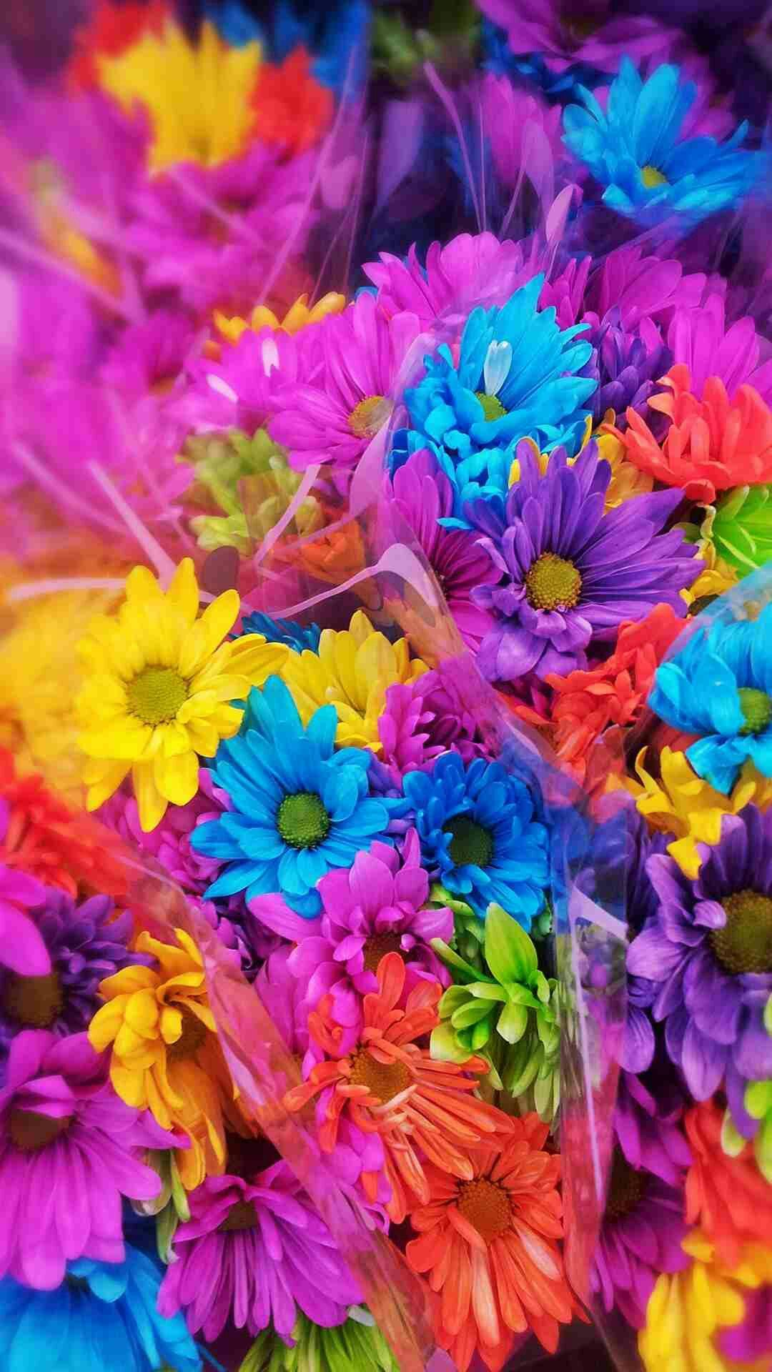 Pin by yasuyo ishige on mika ninagawa pinterest flowers colorful wallpaper wallpapers user profile beautiful beautiful beautiful flowers twitter flower wall papers pretty flowers voltagebd Gallery