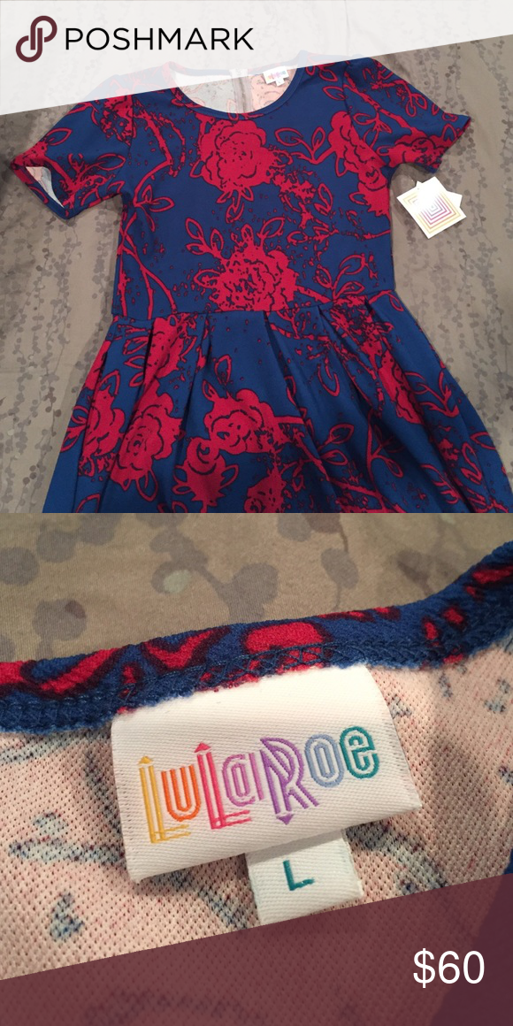 Large Lularoe Amelia dress Lularoe Amelia, size Large.  Great stretchy material, blue/red floral print.  New with Tags.  Comes from a smoke free/pet free home.  Perfect for fall! LuLaRoe Dresses