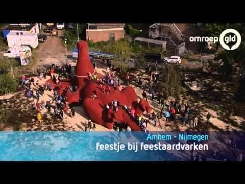▶ Feestaardvarken Arnhem onthuld - YouTube