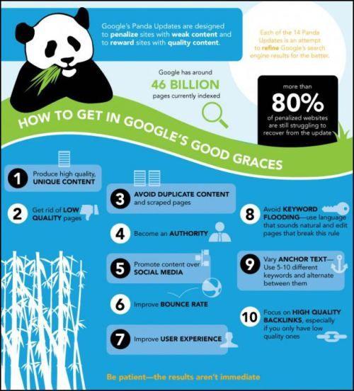 Google Panda infografía #socialmedia