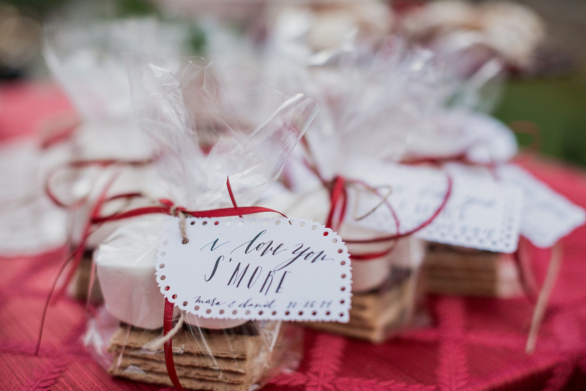 Smores Chocolate Graham Crackers Favors And Wedding