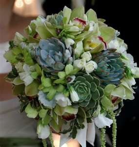 Beautiful succulent bouquet