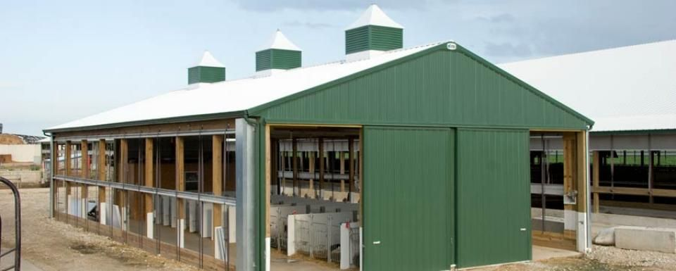 Dairy Building Profile Use Dairy Calf Barn For Livestock
