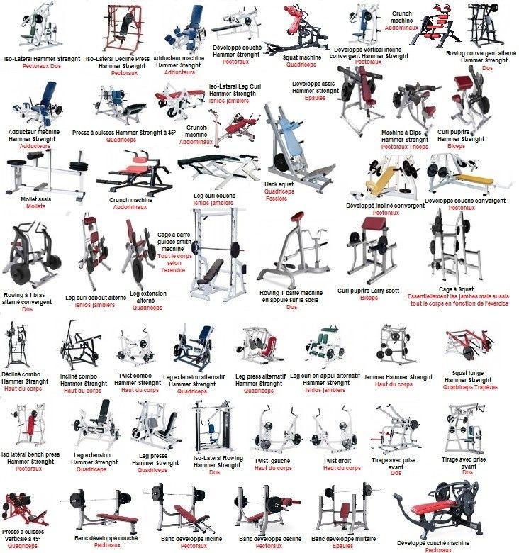 Epingle Sur Site Internet De Musculation Et De Fitness
