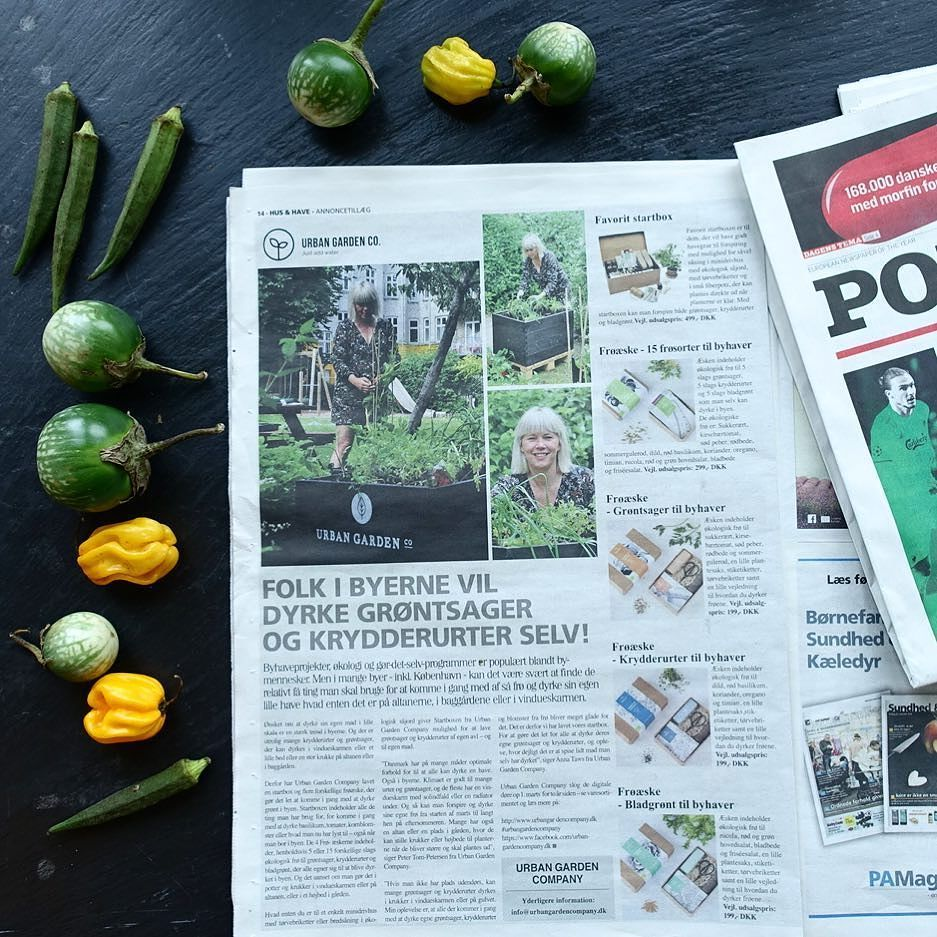 Breaking news  Urban Garden Company er i Politiken i dag  Kig forbi Hus & Have tillægget! #urbangardencompany
