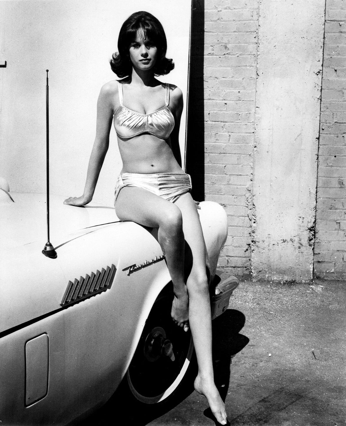 lana wood images