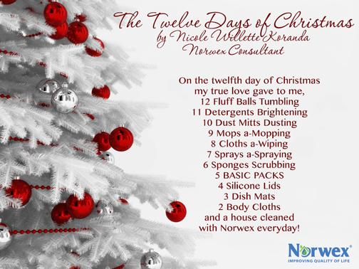 We're closing out the Twelve Days Of Christmas with one more song ...
