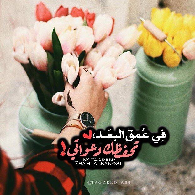 163 Likes 1 Comments ح رم السن وسـي 7ram Alsanosi On Instagram تصميمي مسآئي حبيبي ومسائكم من تحبو Arabic Love Quotes Love Words Wise Quotes