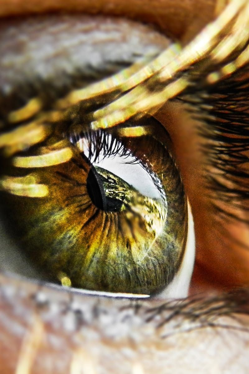 Closeup of human eye photography pinterest human eye