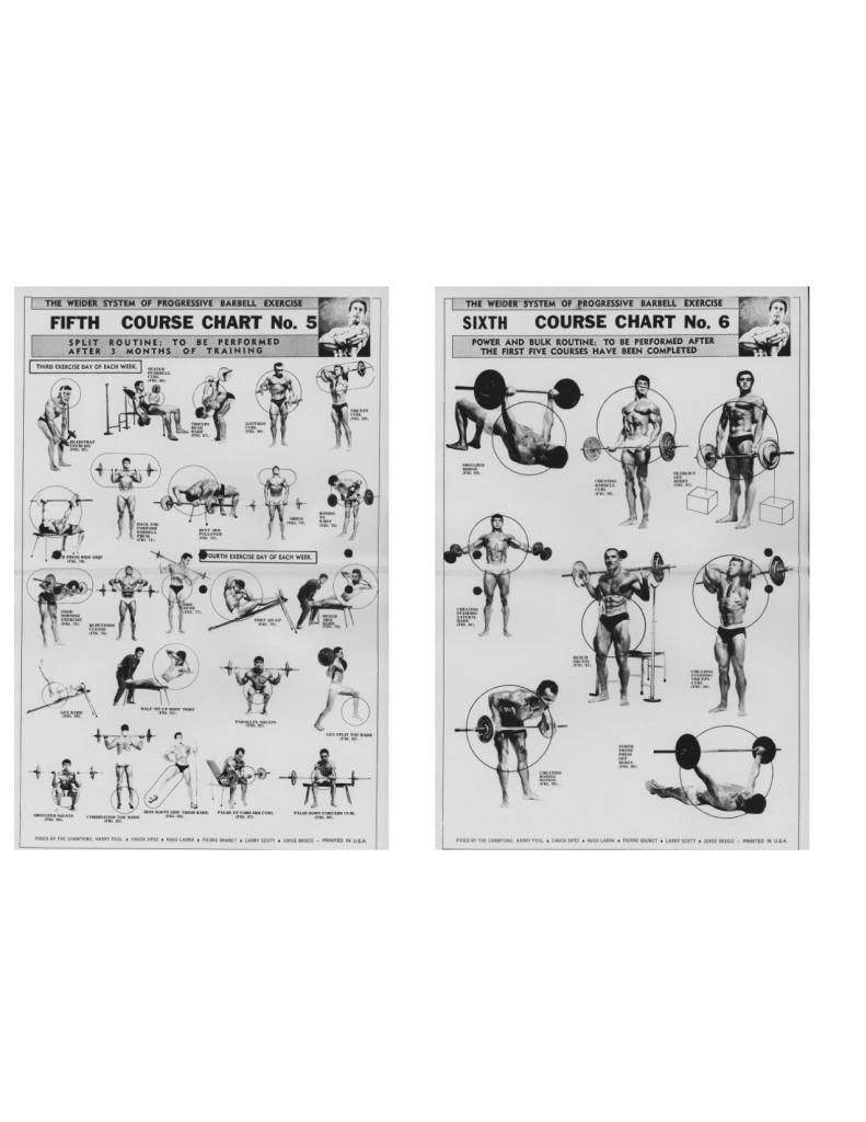 Joe weider new and old charts in the forum also body building rh pinterest