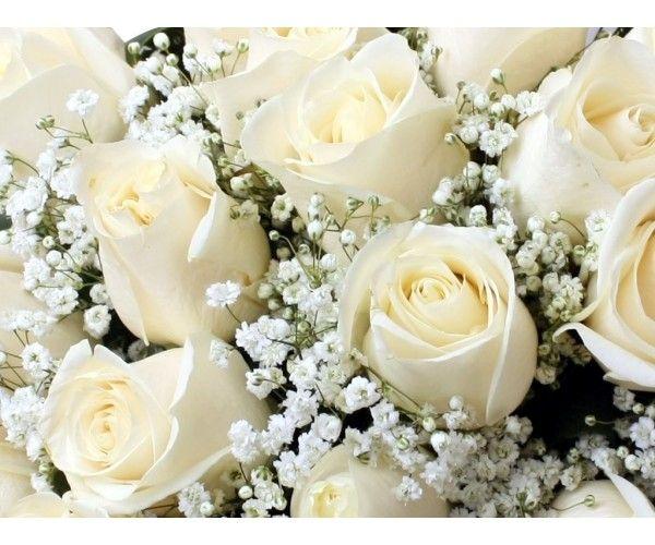 Tu Sitio Web Para Comprar Rosas Online Rosas Blancas Significado De La Rosa Ramo De Rosas