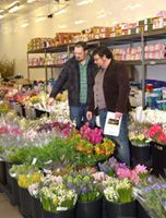 Wholesale flowers at great prices based in silver spring md wholesale flowers at great prices based in silver spring md mightylinksfo