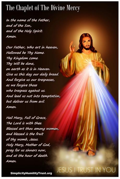the chaplet of the divine mercy start godly etc pinterest