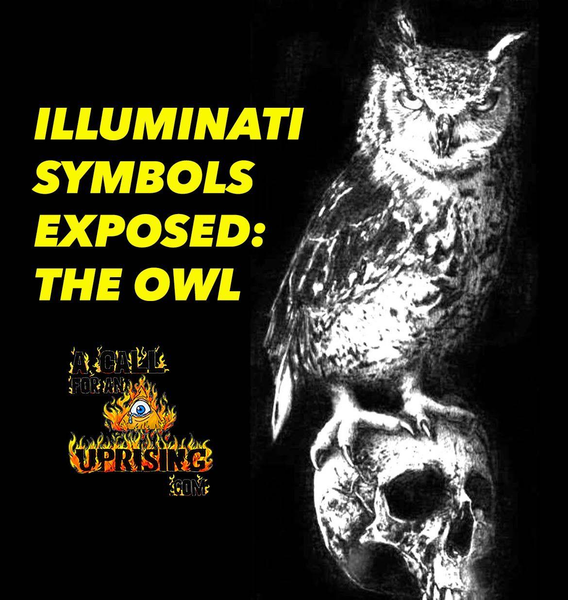 Illuminati symbols exposed the owl illuminati fingerprint illuminati symbols exposed the owl buycottarizona Images