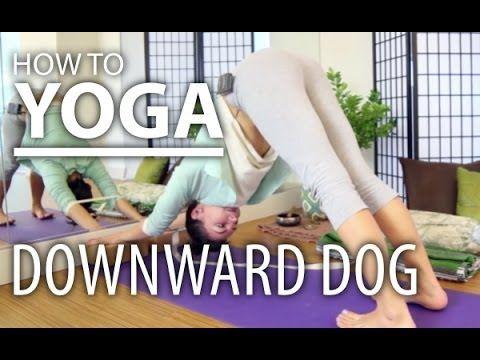 downward dog three downward dog yoga poses with props