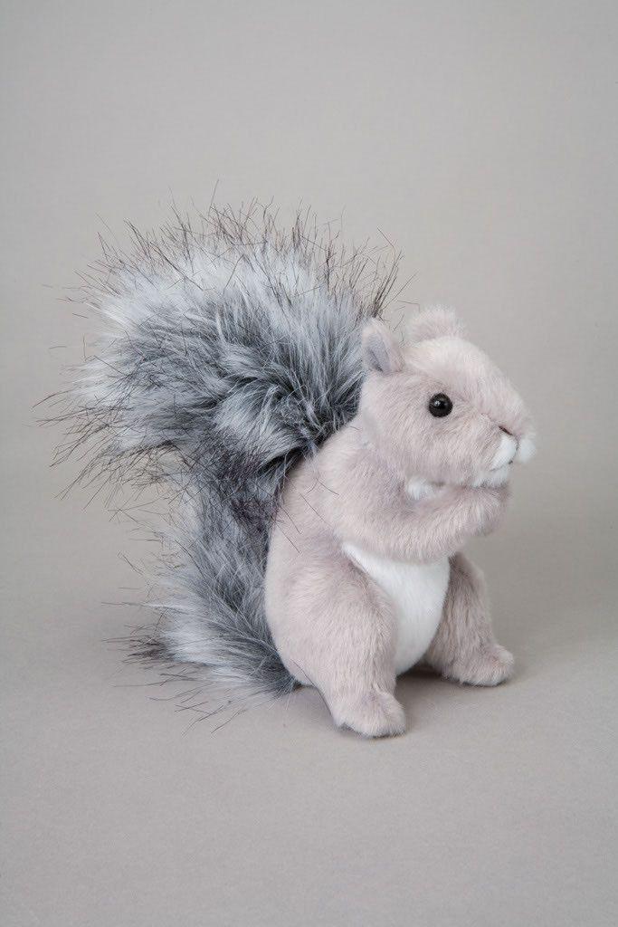 Shasta the Squirrel