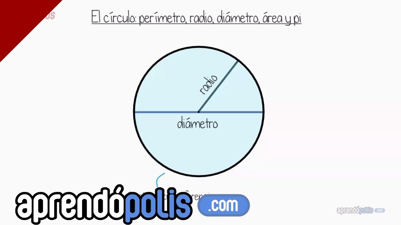 El Círculo Perímetro Radio Diámetro área Y Pi Matematicas Matemáticas Para Niños Educacion