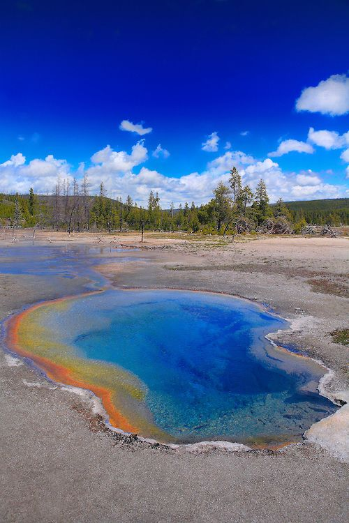 clear geyser pool and cyanobacteria yellowstone national park bill edwards photography national parks yellowstone national park yellowstone pinterest