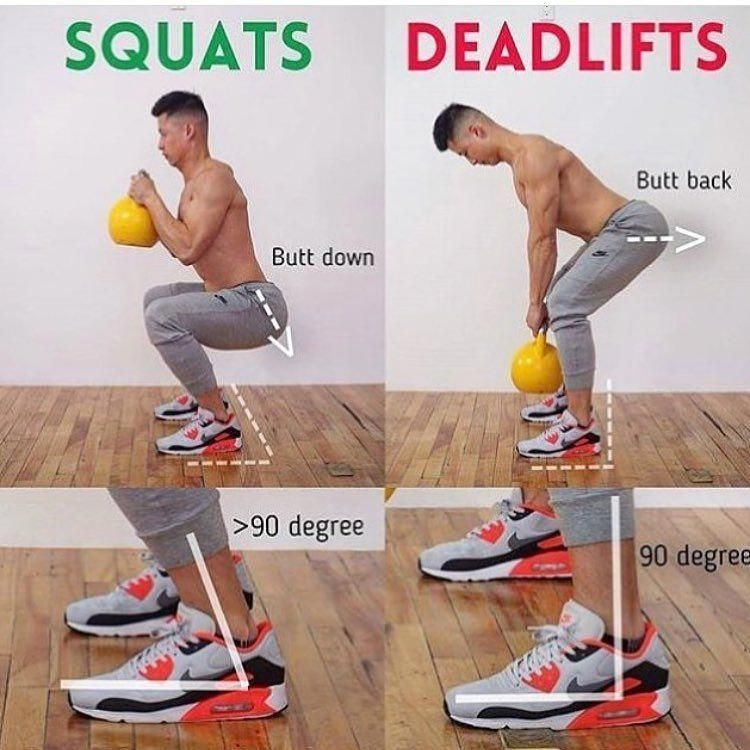Squat Vs Deadlift Which One Should You Choose Squats Will Work Your Quads Glutes And Hamstrings Deadlifts Will Touch Upon Al Workout Traning Schema Traning