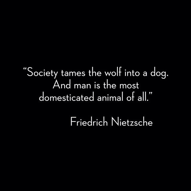 This Will Probably Be The Only Time I Quote Nietzsche Man Is So