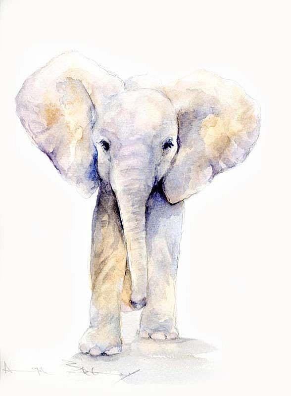 Aquarell Elefant Aquarell Tiere Malen Elefant Malen