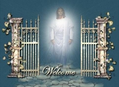 Image result for PEARLY GATES
