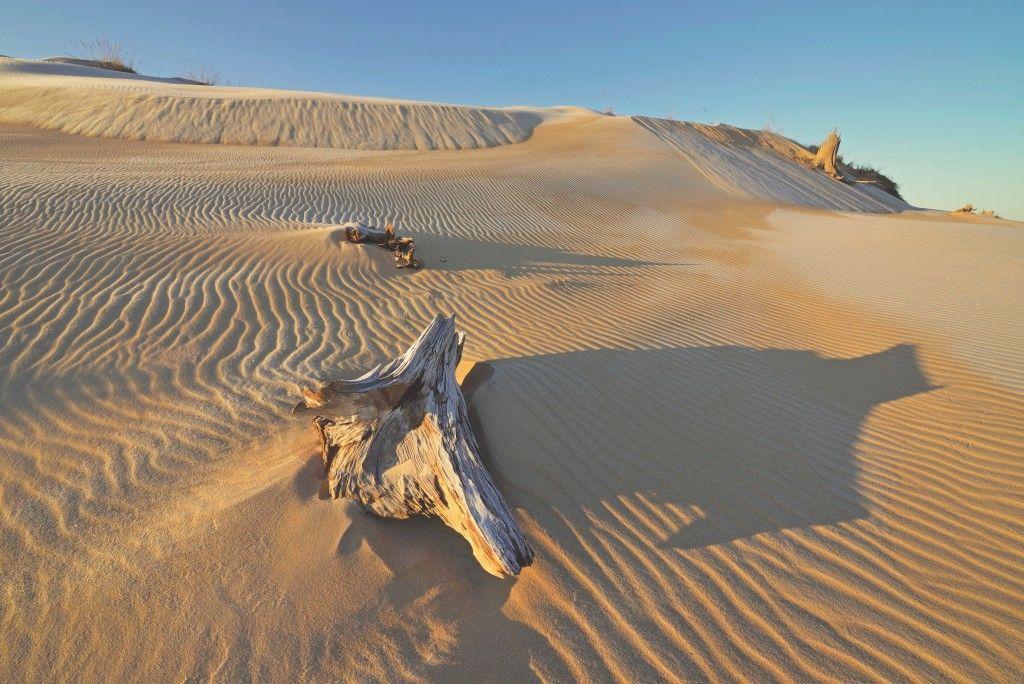 Silver Lake Dunes in Hart, Michigan   Michigan outdoors ... on Dune Outdoor Living  id=42781