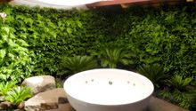 "green wall by New Zealand company ""Green Air"""