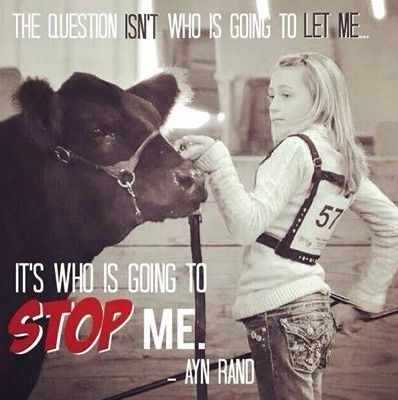 lonestarcountrystore  cow quotes show cows