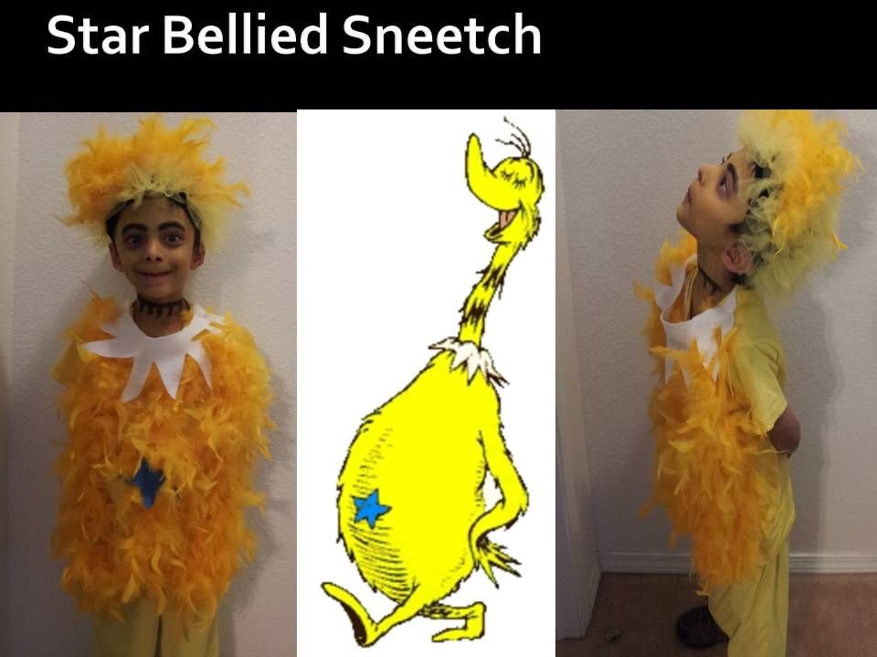 Sneetch costume out of feathers  sc 1 st  Pinterest & Happy Birthday Dr. Seuss. The Sneetches by Dr. Seuss. Home made ...