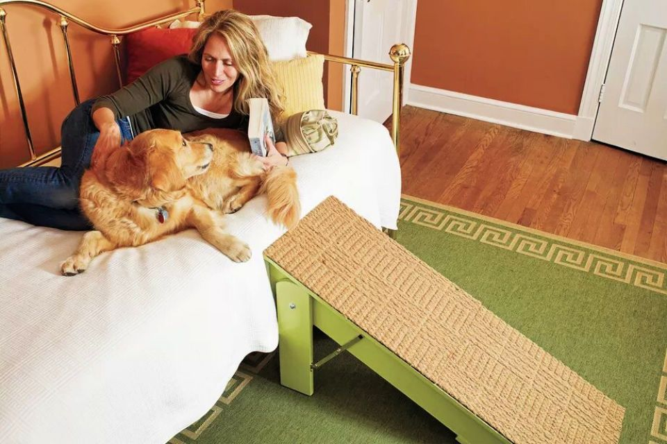 15 Free DIY Dog Ramp Plans With Detailed Instructions in