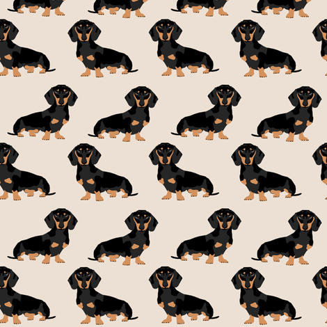 Colorful Fabrics Digitally Printed By Spoonflower Doxie Dachshund Weiner Dog Pet Dogs Dog Weiner Dog Weener Dog Wiener Dog Cute Pet Dog Wiener Dog Dachshund Wallpaper Dachshund