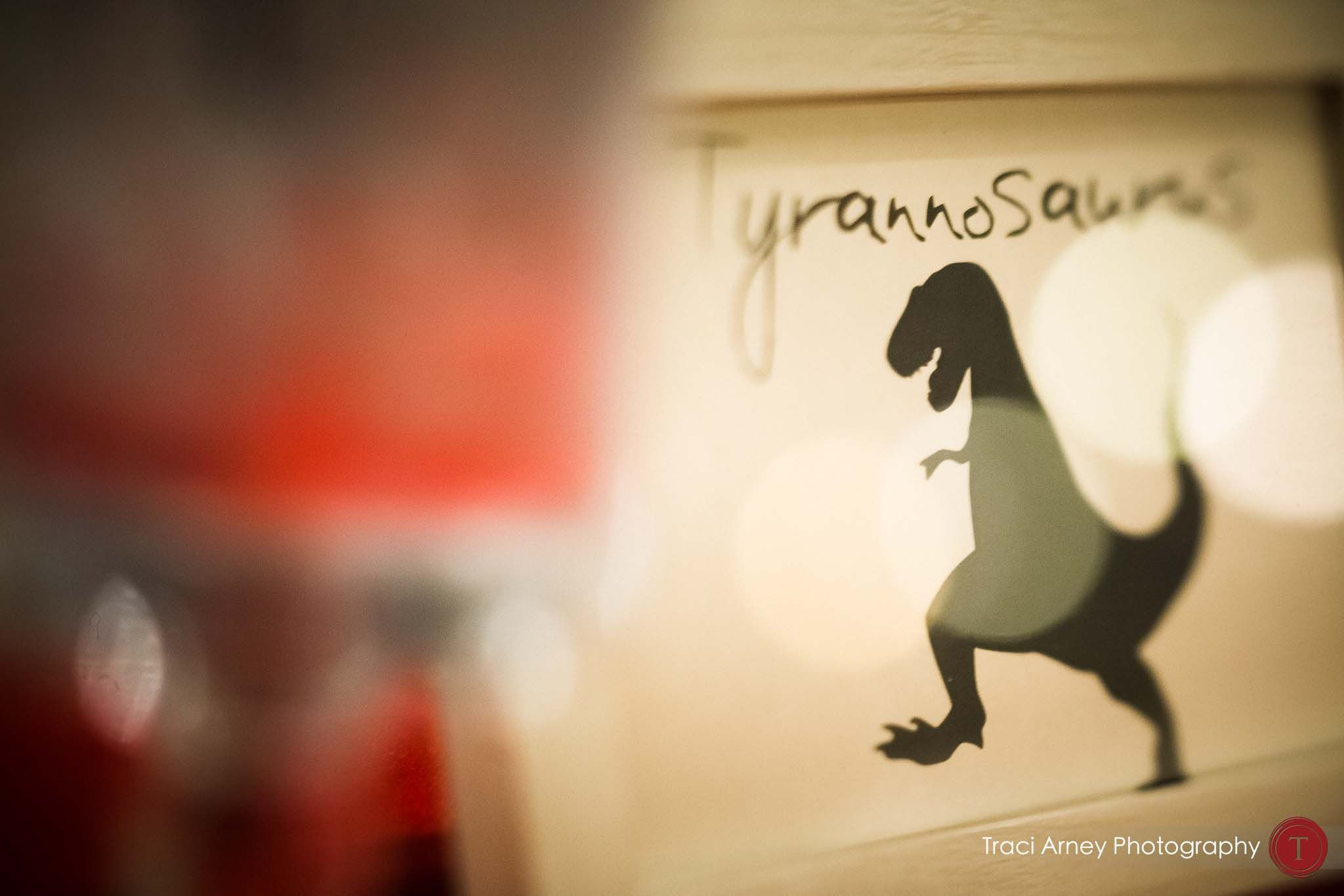 Dinosaur themed table card from wedding at the Museum of Natural Sciences in Raleigh, NC. www.traciarneyphotography.com