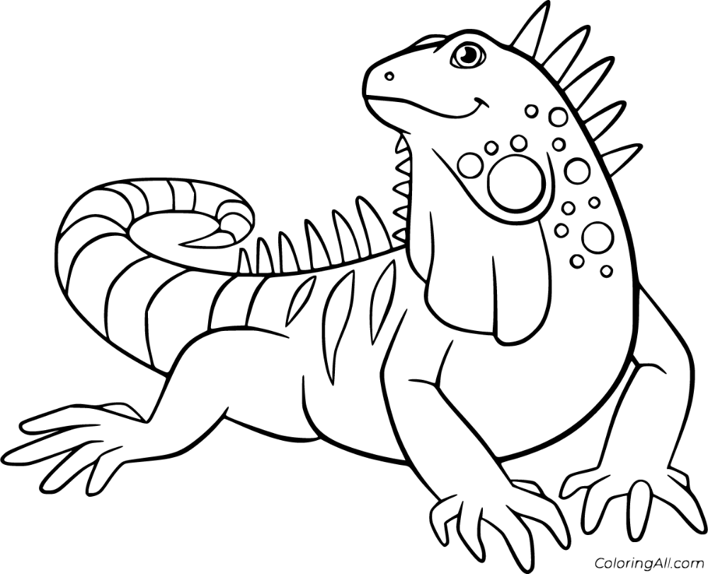 23 Free Printable Iguana Coloring Pages In Vector Format Easy To Print From Any Device And Automatically Fit A Coloring Pages Cartoon Drawings Animal Drawings