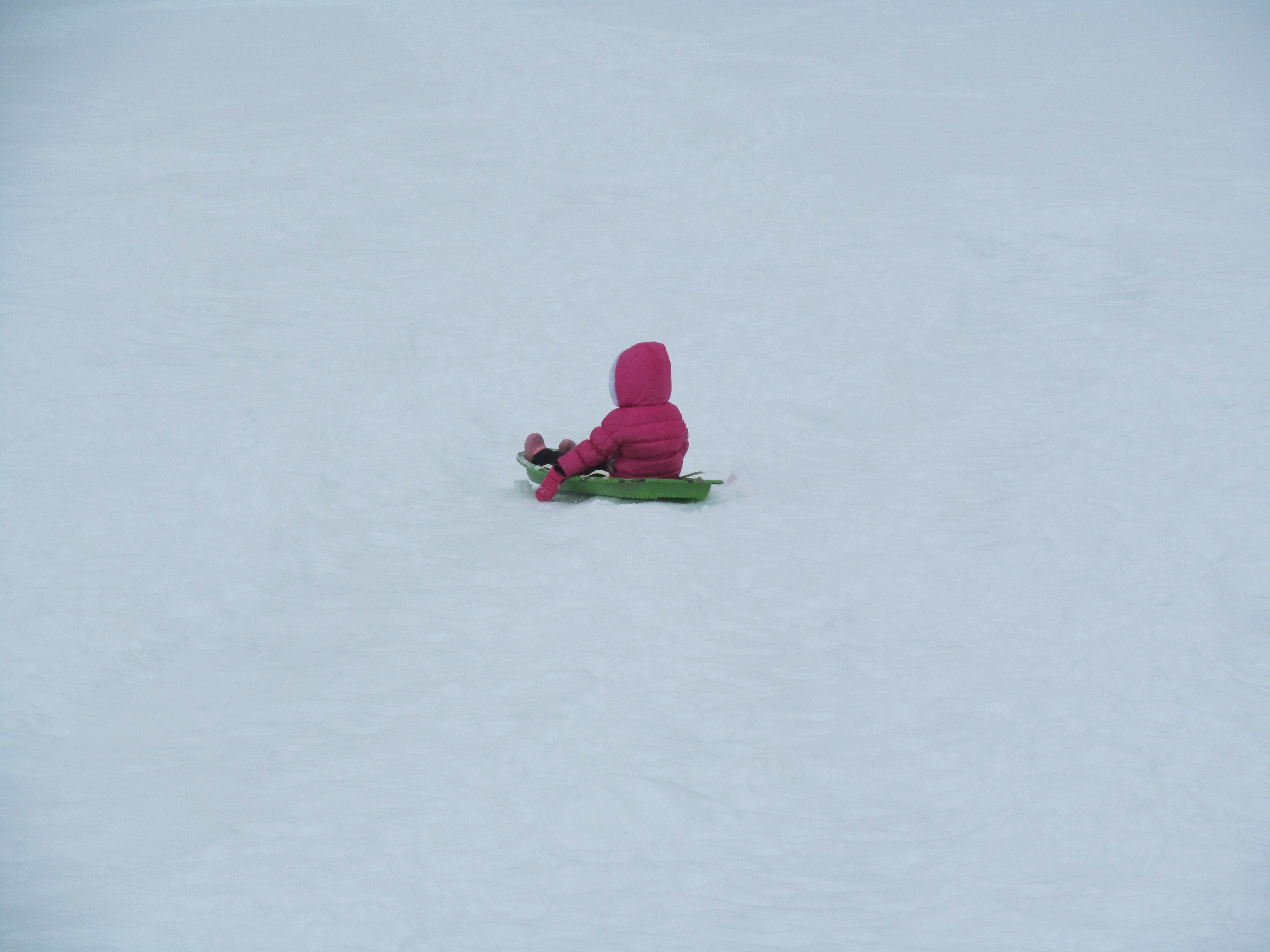 Granddaughter in a Sea of snow