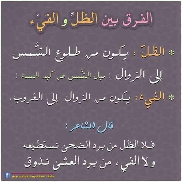 Pin By Rami R Rmlawi On لغتي هويتي Arabic Language Learning Arabic Learn Arabic Language