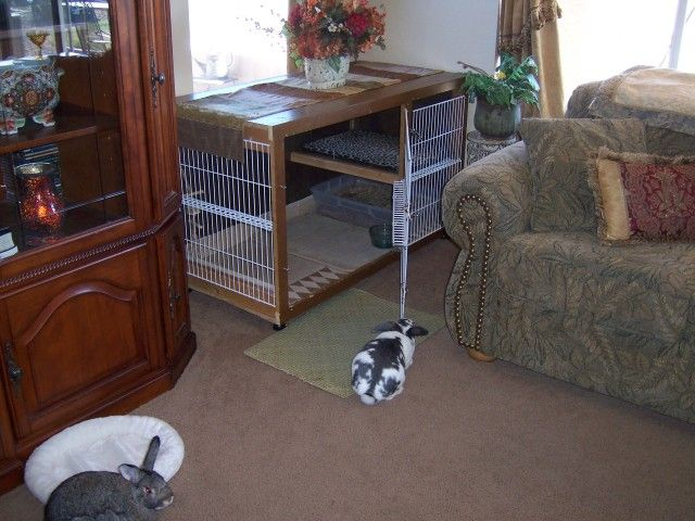 Awesome indoor rabbit cage website also has tons of good info on rabbit care animals for Critter ware living room series
