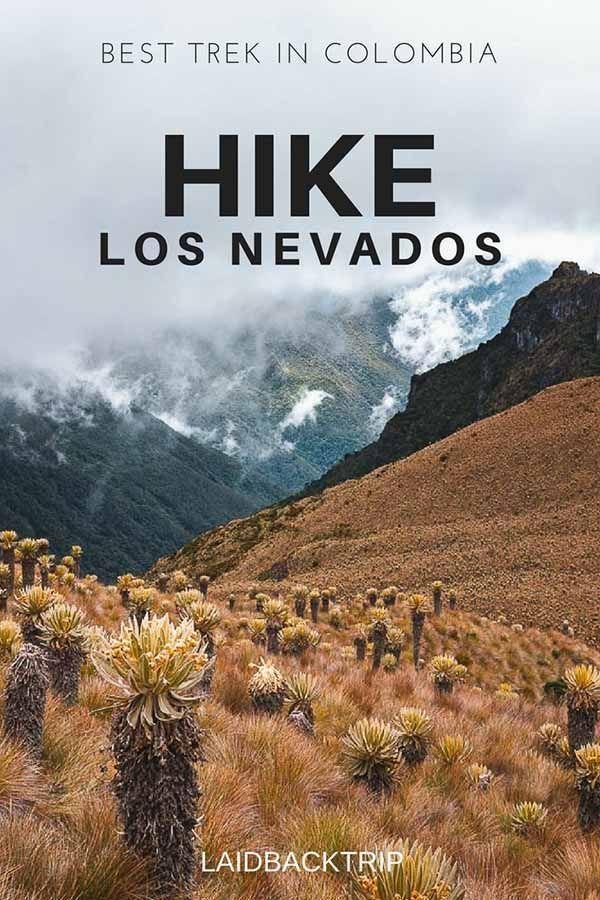 Los Nevados National Natural Park   Parques Nacionales ...  Los Nevados National Park
