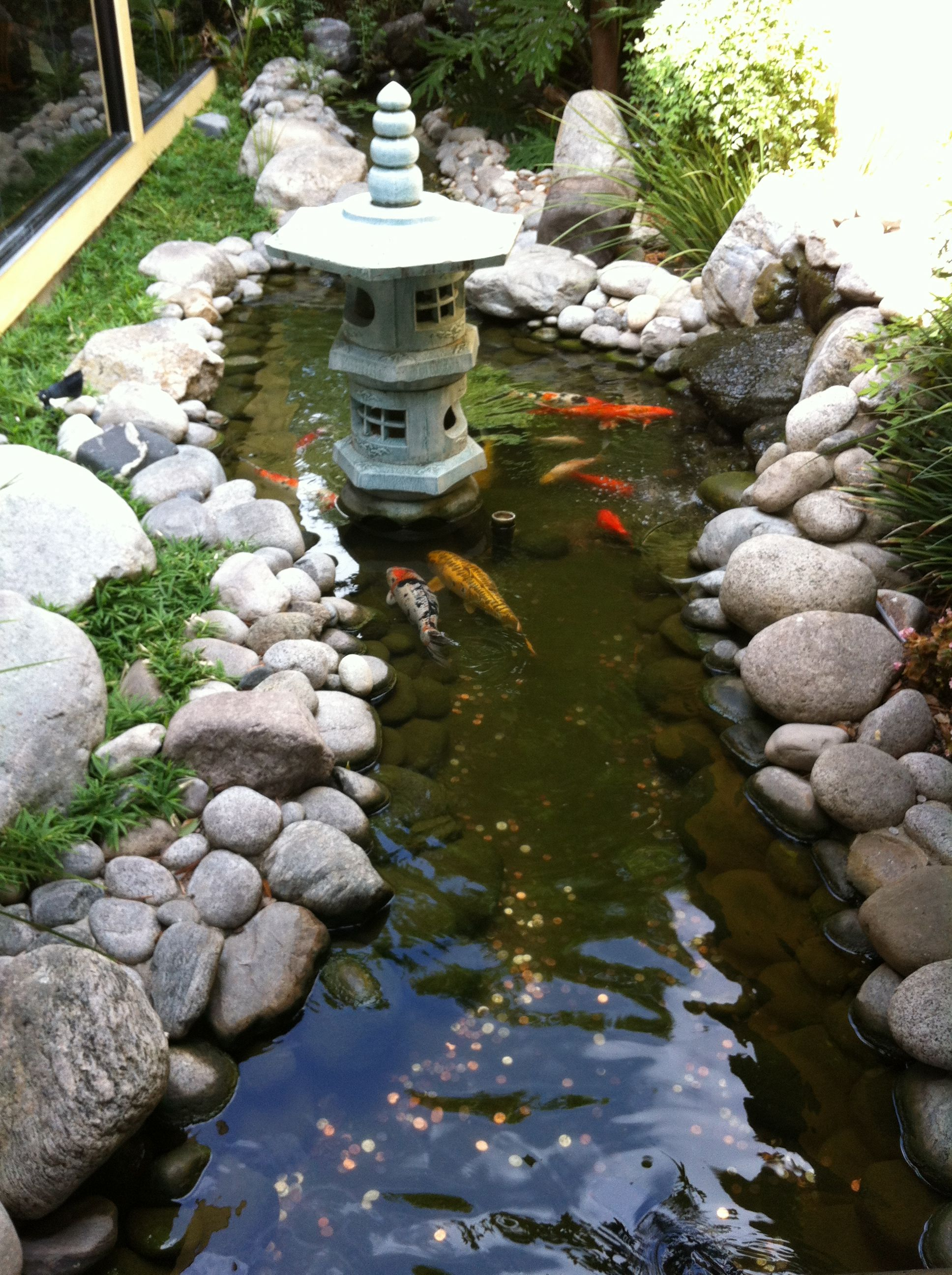 love this fishing pond idea in the backyard c o golden wok